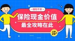 重庆保险咨询师浅谈:什么是保单现金价值