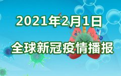 重庆2月1日新冠肺炎疫情速报:全国31省区市新增确诊4
